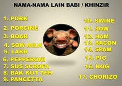 Nama & Istilah Lain dari Babi yang Harus Anda Ketahui